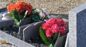 Contrats obsèques – Nos conseils